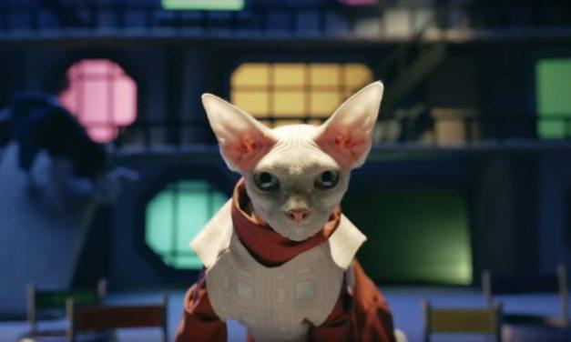 The Expanse Season 2 is coming soon – Recap season 1 (with cats)